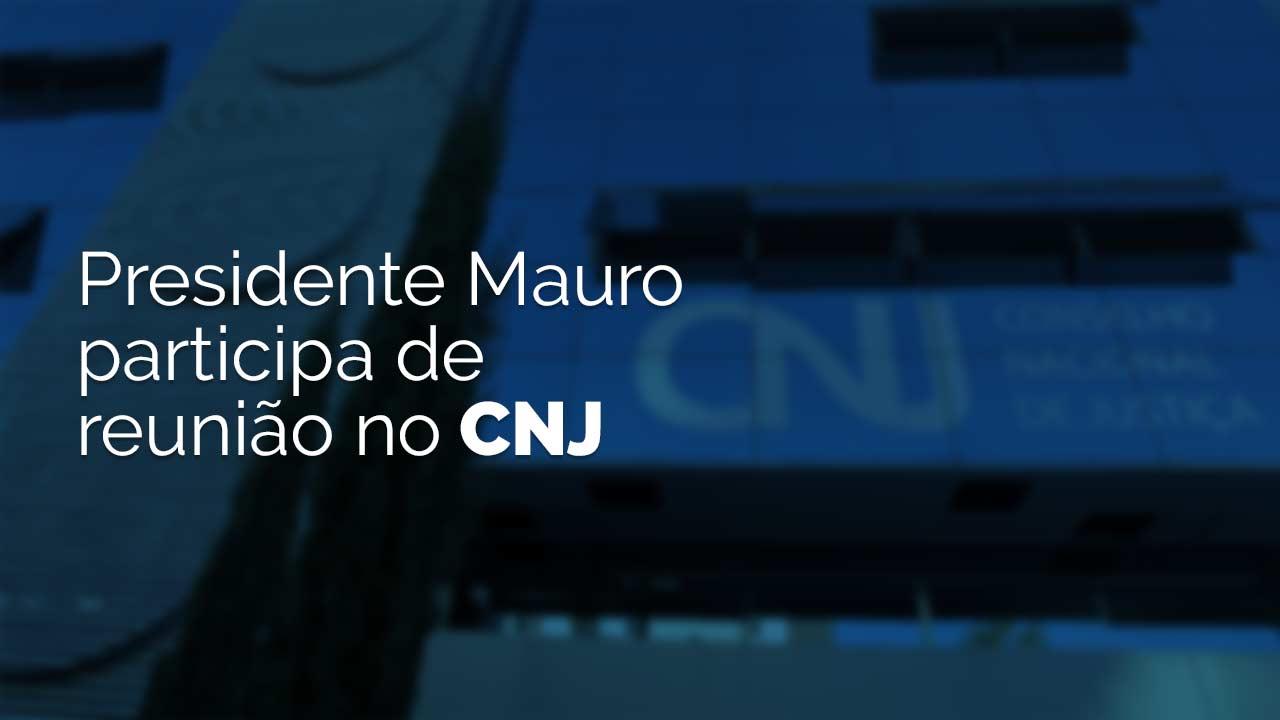Presidente Mauro participa de reunião no CNJ