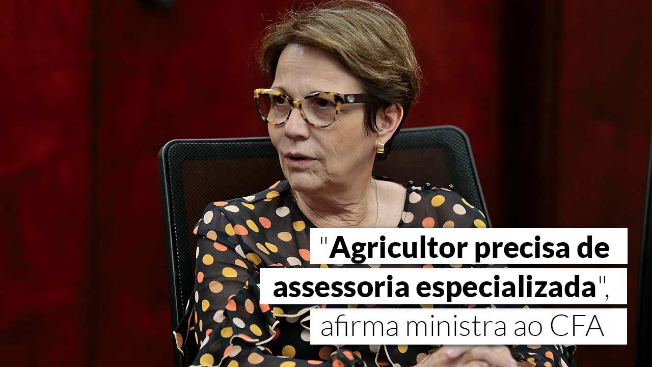 Cotada para a presidência da Câmara, Tereza Cristina permanece no ministério