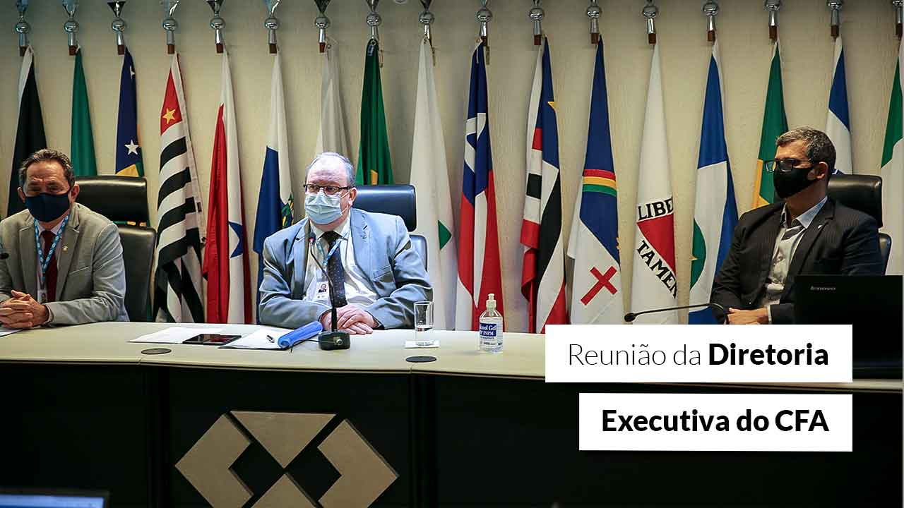 Primeira reunião da Direx de 2021 define ações para os próximos dois anos