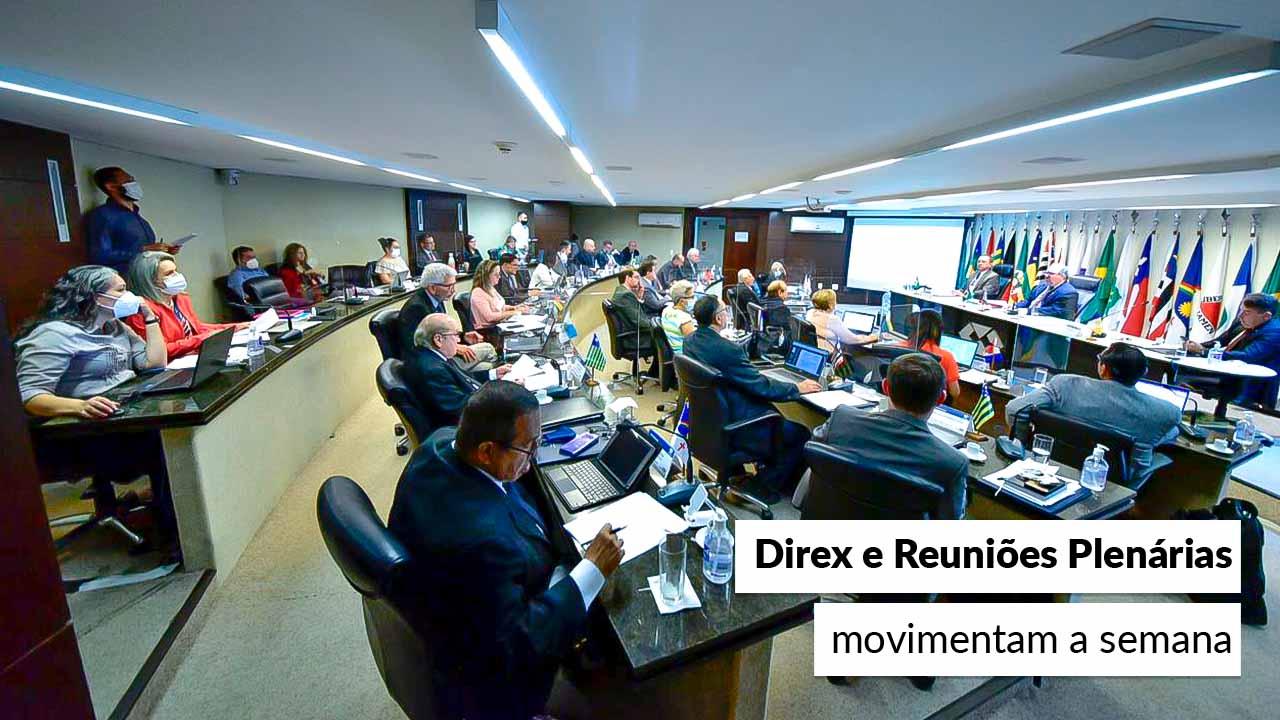 Read more about the article Conselheiros federais reúnem-se no plenário do CFA